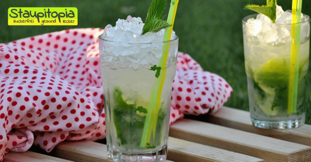 Ein Low Carb Mojito ist genau das Richtige im Sommer: Dieser Low Carb Mojito ist zuckerfrei, alkoholfrei und richtig erfrischend. Für die Zubereitung benötigst du nur 5 Zutaten: Limette, Mineralwasser, Crushed Ice, Erythrit und Tonic Water Light. Probier es am besten direkt aus!