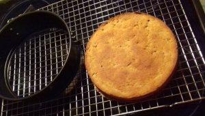 Diese leckere Low Carb Torte kannst du tatsächlich in nur 10 Minuten backen. Sie besteht aus einem lockeren Low Carb Kuchenboden und einem Low Carb Frosting mit Frischkäse und Blaubeeren.