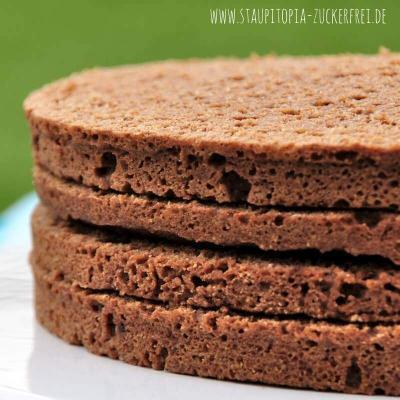 Der schokoladige 5 Minuten Low Carb Tortenboden