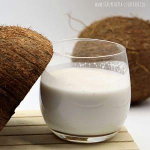 Kokosmilch aus frischer Kokosnuss selber machen