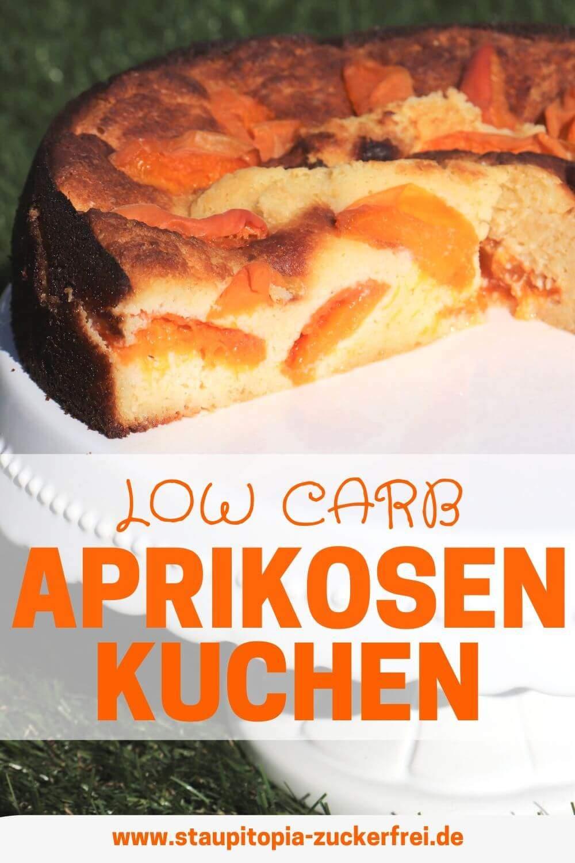 Low Carb Aprikosenkuchen ohne Zucker
