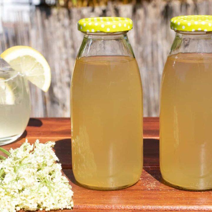 Holunderblütensirup Rezept ohne Zucker