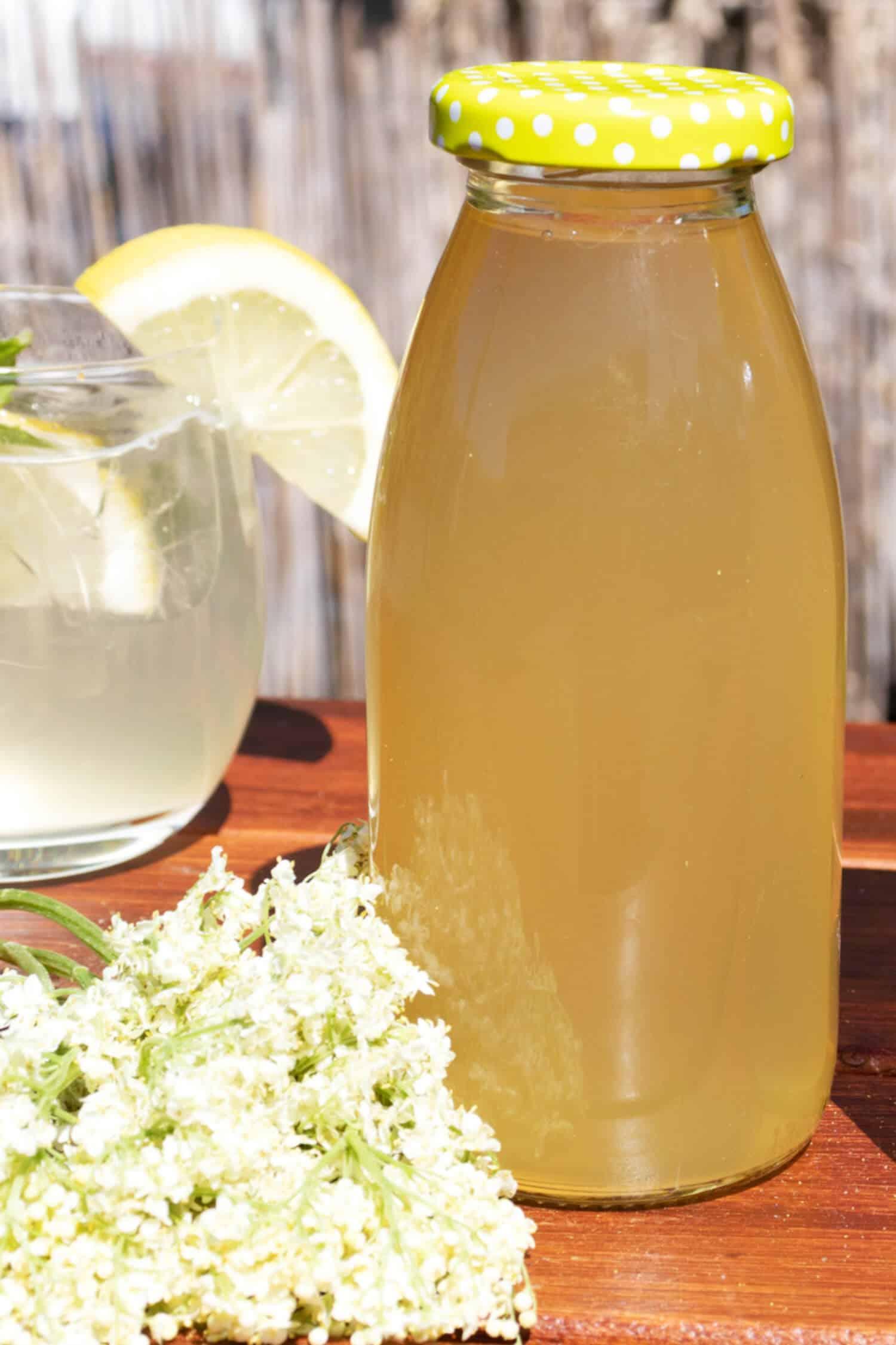 Rezept für Holunderblütensirup ohne Zucker